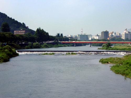 vol19. 東日本大震災と広瀬川の生物たち