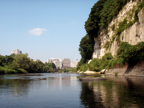 vol20. 広瀬川流域にみられる化石